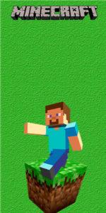 Minecraft- Kit Digital Grátis para Imprimir TUBETE